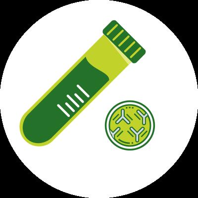 Antibody illustration